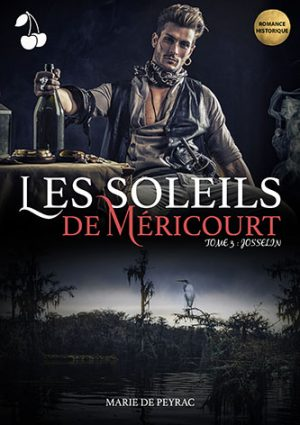 Les Soleils de Méricourt 3_with gold stamp